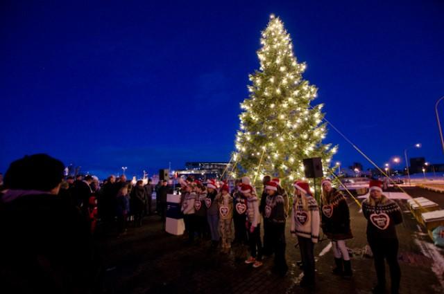 Deutscher Weihnachtsbaum.Deutscher Weihnachtsbaum In Reykjavík Als Symbol Der Dankbarkeit
